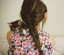 Inspiring picture braid, braided, braided hair, cats, cute. Resolution: 500x440 px. Find the picture to your taste!