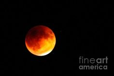 Super Moon Eclipse : http://fineartamerica.com/profiles/robert-bales/shop/all/all/all