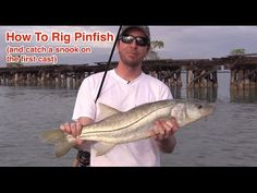 How to Rig a Live Pinfish for Catching Snook, Tarpon, and Grouper