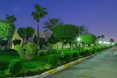 Furnished and luxury compounds in Riyadh