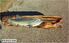 Www.ritlways.com paddle nose fish chainsaw carving
