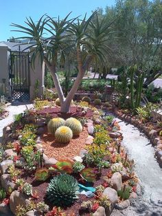 picture of trendy and beautiful desert garden decor ideas 14