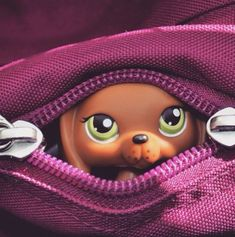 Little Pet Shop, Little Pets, Lps Pets, Animal Crossing, Minis, Childhood, Secret Obsession, Toys, Photography Ideas