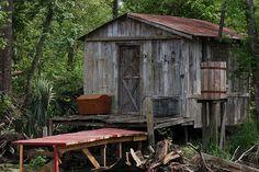 Louisiana Swamp Tour, Cajun Home