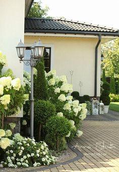 my favoruite lists Landscaping Backyard On A Budget, Front Yard Landscaping, Moon Garden, Dream Garden, Hydrangea Garden, Hydrangeas, Outdoor Flowers, Small Garden Design, White Gardens
