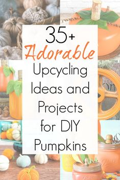 There are SO MANY THINGS that you can transform into fall pumpkin decorations. Big and small, perfect for fall, pumpkins are everywhere. And these upcycling ideas will surely inspire you to create some pumpkin crafts and upcycled pumpkins of your own! #DIYpumpkins #pumpkindecorations #DIYpumpkins #upcycledpumpkins #repurposedpumpkins #falldecorations #Thanksgivinghomedecor #Thanksgivingdecorations Pumpkin Decorations, Harvest Decorations, Thanksgiving Decorations, Fall Pumpkins, Halloween Pumpkins, Fall Halloween, Diy Pumpkin, Pumpkin Crafts, Upcycling Ideas