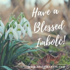 Imbolc is a celebration of light and fertility. In this article, I share my own Imbolc ritual for solitary and coven witches. Imbolc Ritual, Beltane, Wicca Witchcraft, Wiccan, Magick Spells, Corn Dolly, Witch Coven, Grimoire Book, Celtic Goddess