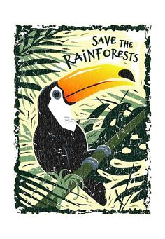 Toucan - Save The RainforestsYou can find indonesia illustration and more on our website.Toucan - Save The Rainforests Deforestation Poster, Environmental Posters, Save Wildlife, Deep Art, Bird Poster, Animal Posters, Bird Drawings, Vintage Fashion, Vintage Style