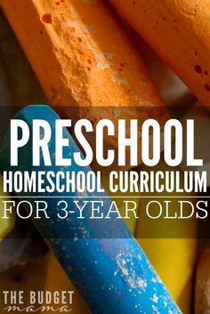 Looking for a preschool homeschool curriculum for 3 year olds? This is the one we are using for our family along with how we are organizing it to help keep us sane.