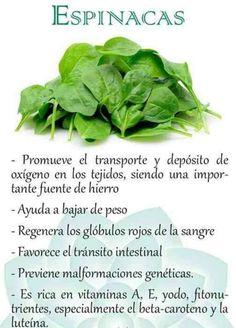 #espinacas