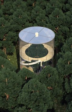 Tree in House: Glass Cylinder Wraps Five-Story Fir in Forest //