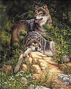 Dimensions Needlecrafts Paintworks Paint By Number, Wild & Free Wolves Dimensions Needlecrafts $19.49 http://smile.amazon.com/dp/B002MCCY3A/ref=cm_sw_r_pi_dp_UdGKub1BV4D9B