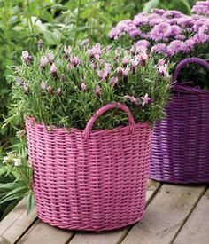 pink and purple baskets