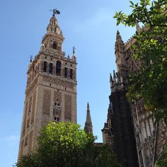 #Sevilla today #Cathedral & tower in blue skys By pjotrrrr