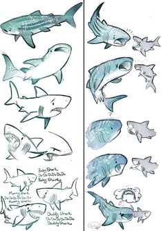 This started off as just the whale shark, but great white snuck its way in there. They are complete opposites. The shark song makes me think of my brother who is going to be a dad soon. ...