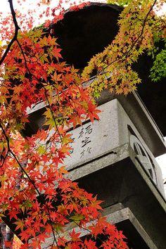 中野邸美術館 Museum of Nakano's Residence