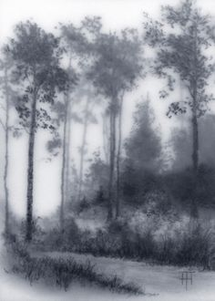 In the Woods - TERRI HEINRICHS - charcoal graphite and pastel layered original art - SOLD