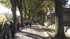 The Cimitière du Père Lachaise is a common destination for a walk by locals and tourists.