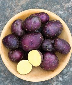 We're already planning for our 2014 garden! This is Potato, Midnight Moon. A masterpiece of color, form and flavor. The potentate of purple potatoes, attired in a gorgeous regal purple skin, and blessed with awesomely delicious, tender, moist, golden-yellow flesh. High moisture content makes these purple paragons perfect for mashing and baking. Very high yielding plants unleash a prodigious yield of gorgeous round tantalizing tubers.
