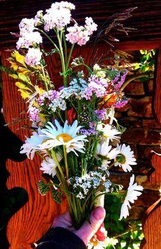 Wild Flower Bouquet- FamilyFreshCooking.com