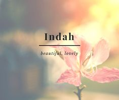 As a popular local saying goes, 'a name is a prayer you give to a child'. Discover beautiful Indonesian names and what they mean. Words 11 Beautiful Indonesian Names and What They Mean The Words, Weird Words, Cool Words, Beautiful Meaning, Beautiful Words, Urdu Words, Words Quotes, Beauty Photography, Female Names
