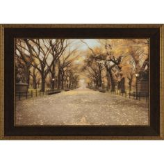 Central Park Framed Painting Print