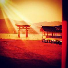 """@ilaria_agostini's photo: """"#miyajima #japan"""""""