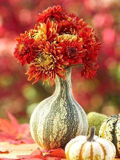 Flaschenkürbis Herbstblumenboquet