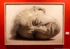 """Und auch das MEAM in Barcelona hat eine tolle neue Ausstellung: """"Golucho"""" ist noch bis zum 12. April zu sehen!"""