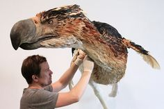 We know you want to see more of our Terror Bird... - BLUE RHINO STUDIO Artistic Fabrication and Design
