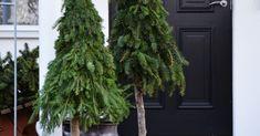 Hej på er. Det närmar sig pyssel inför advent i butiken, här kan du läsa om det!, och jag har ju skrivit som information att vi s... Grinch, Flower Power, Advent, Herbs, Flowers, Decor, Christmas Decor, Craft, Decoration