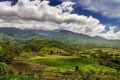 More landscape of rice fields. Such beauty Bacolod City, Some Pictures, Philippines, Fields, Terrace, Rice, Mountains, Landscape, Travel