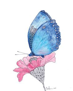 Blue Butterfly Watercolour Art Drawing 8x10 by CloudsofColourShop, $25.00