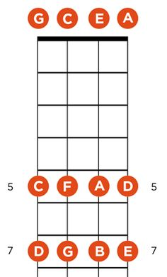 Get To Know Your Fretboard