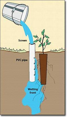 Garden Irrigation System, Water Irrigation, Irrigation Systems, Backyard Plan, Backyard Landscaping, Container Gardening, Gardening Tips, Self Watering Planter, Watering System For Garden