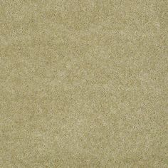 Bandit II-ALOE wood carpet is made of filament nylon. It is available in various colors like champagne toast, Bermuda sand, gorgeous ivory, face powder, mesa beige etc. This carpet is soft, smooth and it features life time warranty.