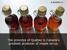 23 Amazing Quebec Facts - Raise Your Brain