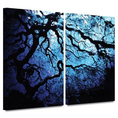 'Japanese Ice Tree' by John Black 2 Piece Photographic Print Gallery-Wrapped on Canvas Set
