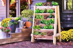 jardineras verticales independientes de madera