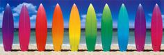 Surf Boards Rainbow Posters at AllPosters.com