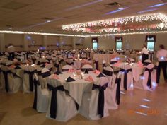 Chair Covers, Pink and Navy Blue wedding