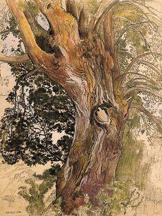 poboh:    Tree, Ernest Biéler. Swiss (1863 - 1948)