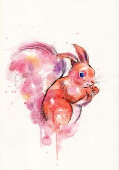 Squirrel - watercolor painting