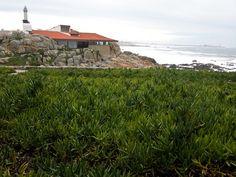 AD Classics: Boa Nova Tea House,© Flickr User maurizio.mwg