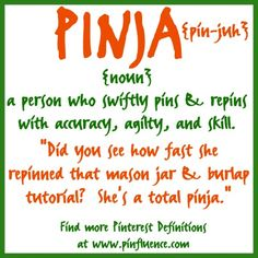 I cannot tell you how much I <3 this!  I am a TOTAL PINJA! HI-YA!