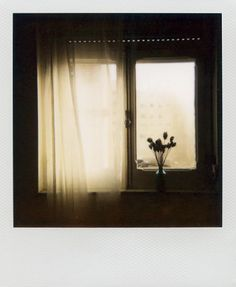 Polaroid · Filiperaimundo · Kalte · 04