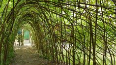 """Berlin - Bambini Oase - Willow tunnel :: from """"A look at five schools that are taking learning back to nature""""  - The Globe and Mail"""