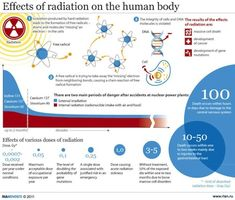 Effects of radiation on the human body - Data Visualization Encyclopedia, Information Technology, Symbols, Posters, Infographic The Human Body, Radiation Therapist, Radiation Exposure, Radiation Dose, Nuclear Physics, Nuclear Medicine, Nuclear Energy, Medical Imaging, Information Graphics