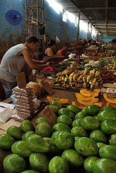 market_pazari, a photo from La Habana, West Vinales, Trinidad, Varadero, Cuba Travel, Cuban Recipes, Havana Cuba, Gulf Of Mexico, Central America, So Little Time