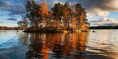 island in Lake Vuoksa, on the Carelian Isthmus separating Russia and Finland: photo by Dmitry A. Mottl, 2009 The golden glow . Autumn Lake, Autumn Trees, Wiki Picture, Morin, Desktop Pictures, Wallpaper Pictures, Blog Voyage, Big Sky, Nature Wallpaper